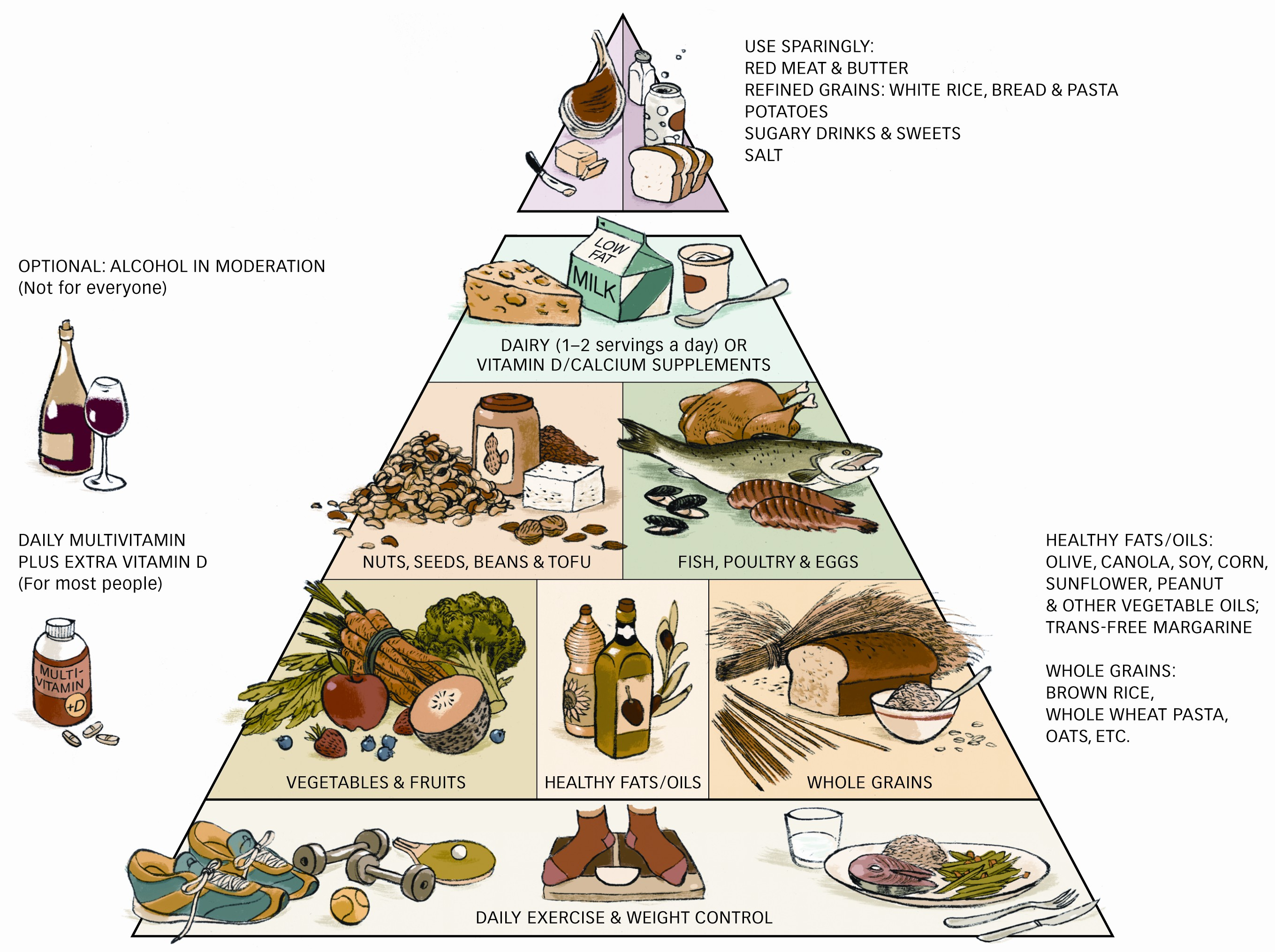 Healthy food pyramid presents healthy choice of food for your everyday