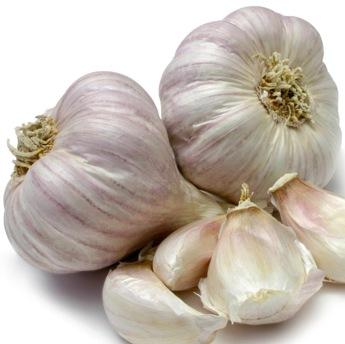 Does garlic lower cholesterol