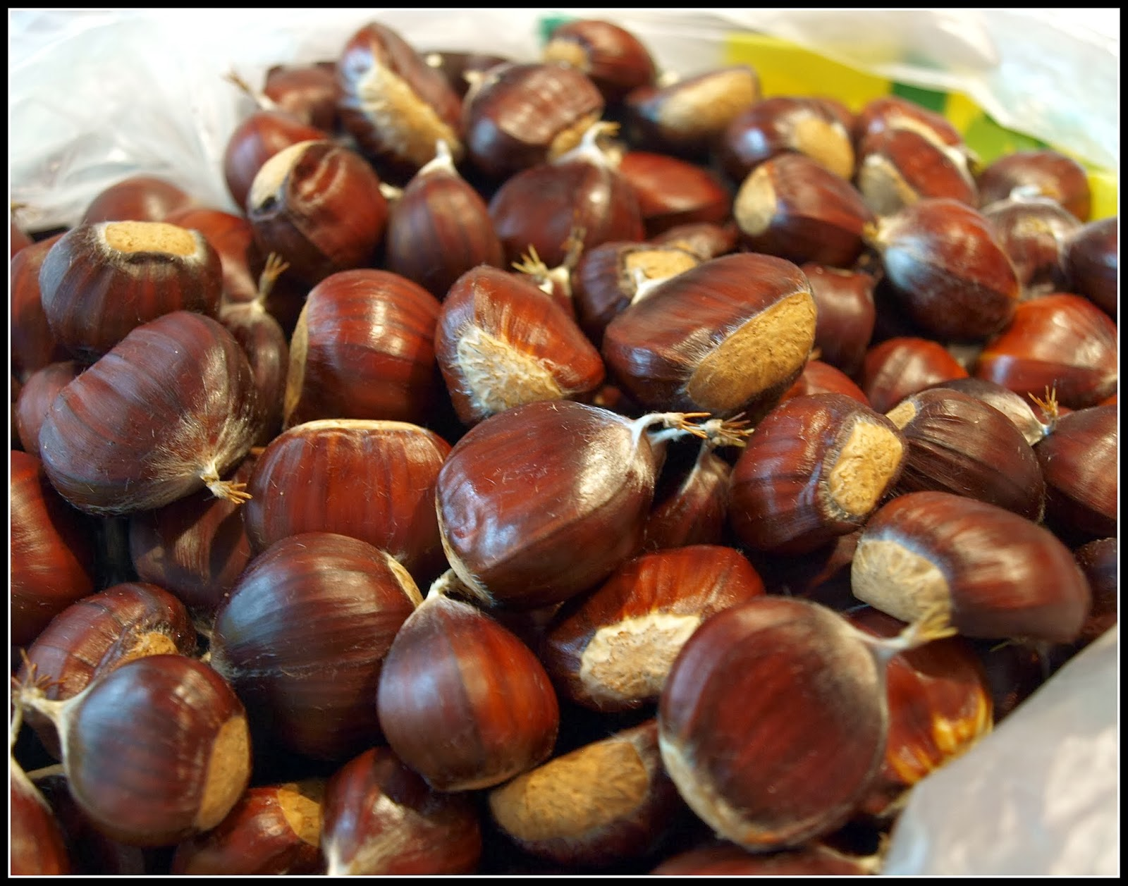 Chestnuts nutrition facts and health benefits for The chestnut