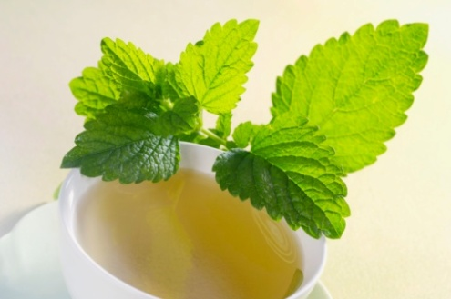 simple-natural-remedies-for-stress-and-anxiety-lemon-balm