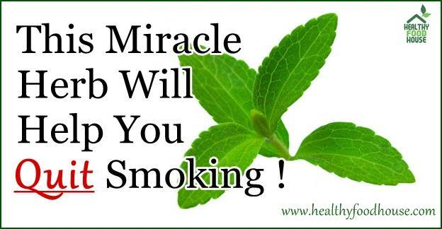 This Miracle Herb Will Help You Quit Smoking