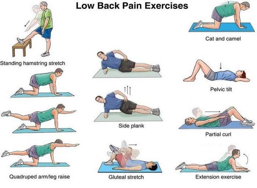 Billedresultat for exercises for your back
