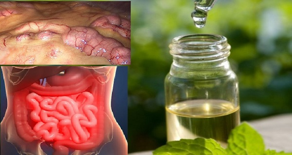 Image result for Remove All Toxins From The Body In 3 Days: A Method That Prevents Cancer, Removes Fat And Excess Water!