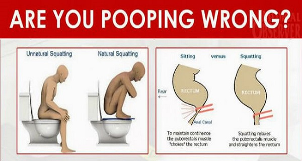 You Are Pooping In A Wrong Way And You Don T Even Know