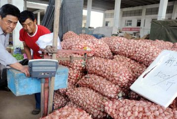 your-garlic-is-being-imported-from-china-filled-with-bleach-and-chemicals-heres-how-to-spot-it