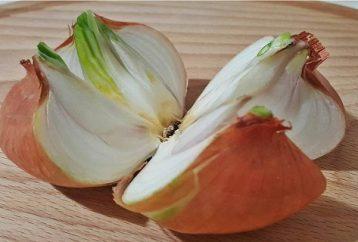 cut-whole-onion-4-pieces-place-home-reason-brilliant