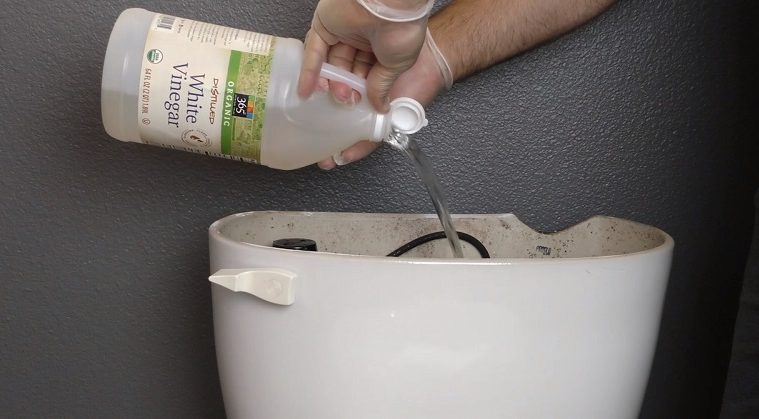 Vinegar Cleaning Bathroom Mold