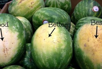 how-to-pick-the-perfect-watermelon-5-key-tips-from-an-experienced-farmer