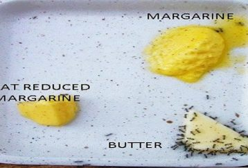 fat-facts-butter-vs-margarine-truth-not-told