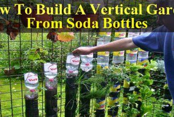 not-throw-soda-bottles-make-vertical-garden