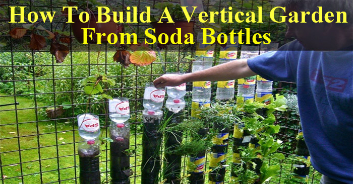 Do Not Throw Your Soda Bottles Make A Vertical Garden With Them