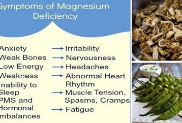 10-foods-increase-magnesium-prevent-high-blood-pressure-blood-clots-muscle-fatigue