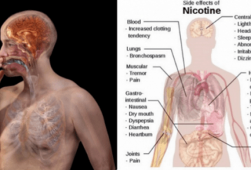 smokers-should-know-this-these-foods-can-cleanse-the-nicotine-in-your-body