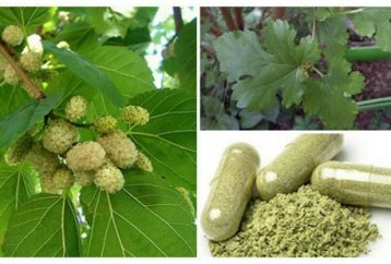 plant-grows-everywhere-can-treat-tumors-hypertension-diabetes-didnt-know