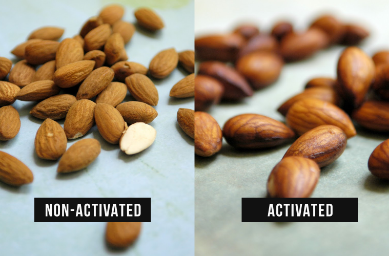 Image result for Why You Should 'Activate' Your Nuts & Seeds – And How To Do It
