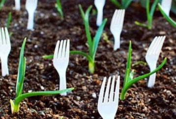 stop-tossing-plastic-utensils-heres-5-reasons-plant-instead