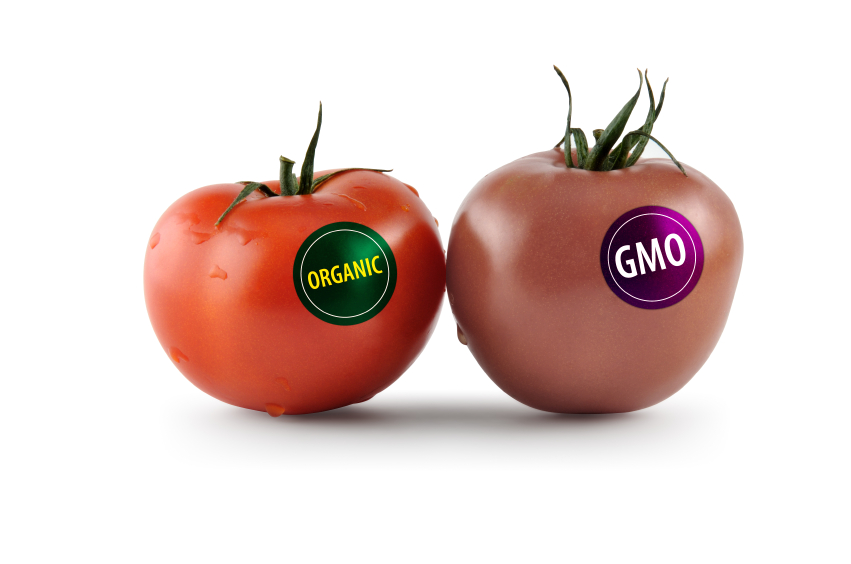 Most Genetically Modified Food List