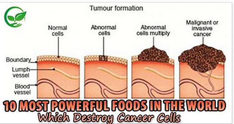Natural Foods That Fight Cancer Cells