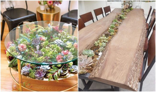 Tables turned into succulent gardens